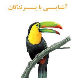 آشنایی با پرندگان